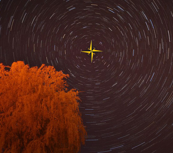 The north star is the brightest star in the constellation 'ursa minor' (the little bear)